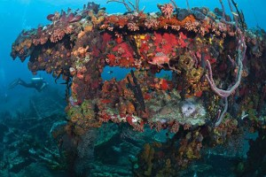 Explore the Underwater Attractions of the BVI: Dive the R.M.S. Rhone